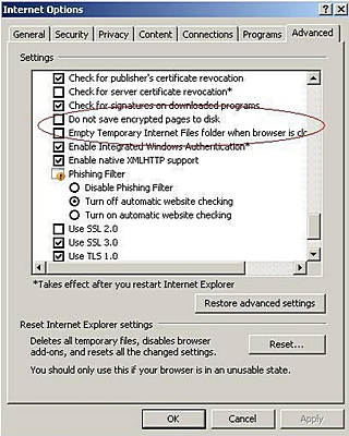 IE advanced settings