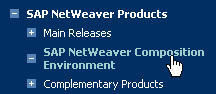 SAP NetWeaver CE product page