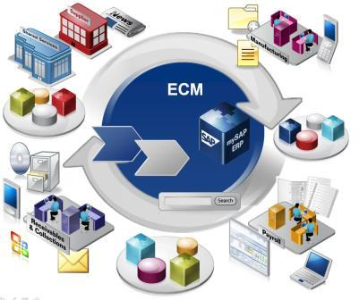ECM environment forces a high Integration and a high business untit applicability