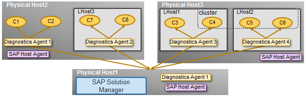 Agents: SAP Host Agent and SAP Diagnostics Agents on physical and virtual hosts