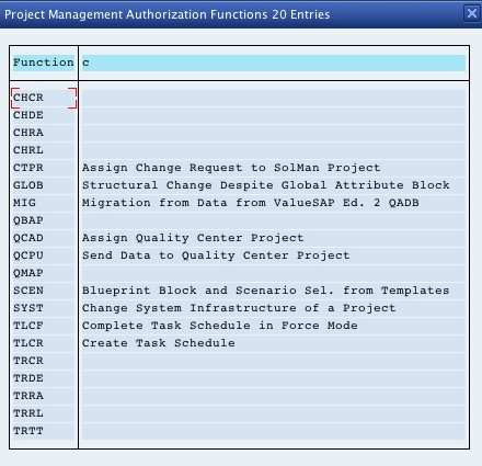 Proj_Func values in SolMan 7.0