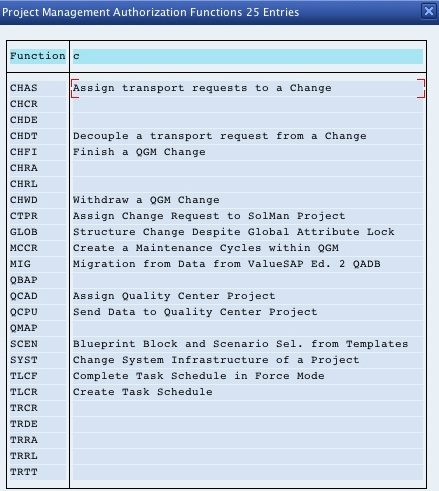 Proj_Func values in SolMan 7.1