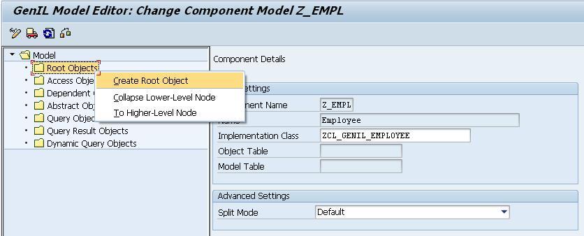 Custom GenIL Object Model: An Overview   SAP Blogs