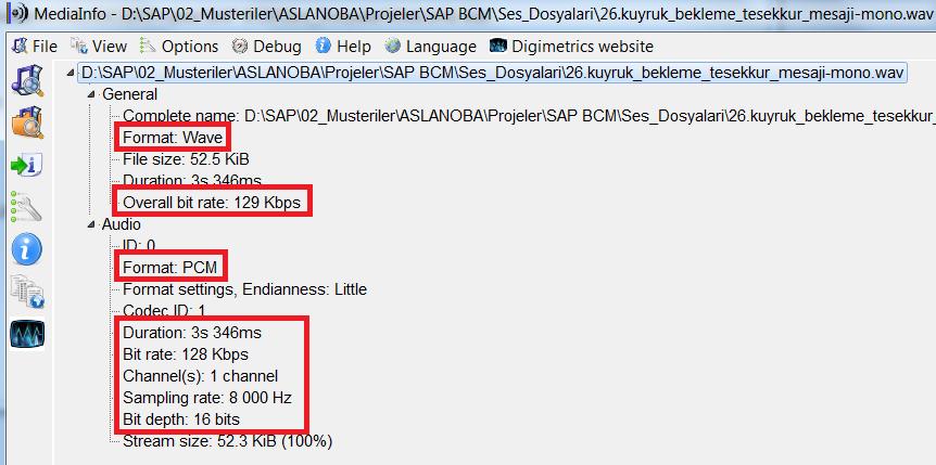 8 Bit Pcm Mono Wav File Download - pigiextra
