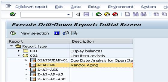 Vendor Aging Analysis Through SAP Report Painter | SAP Blogs