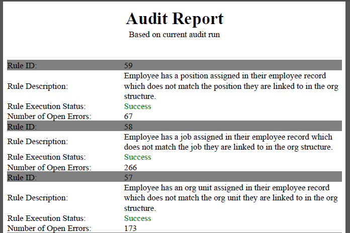Audit Report.PNG