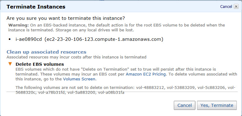 Preventing the deletion of EBS Volumes during the termination of AWS