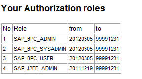 Display Authorization roles.jpg