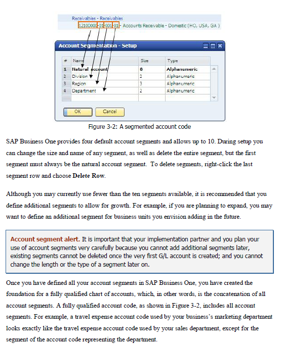 /wp-content/uploads/2013/06/sap_business_one_account_segments_3_232436.png