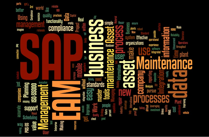 SAP Centric EAM 2013 Word Cloud Speakers and Track Chairs.jpg