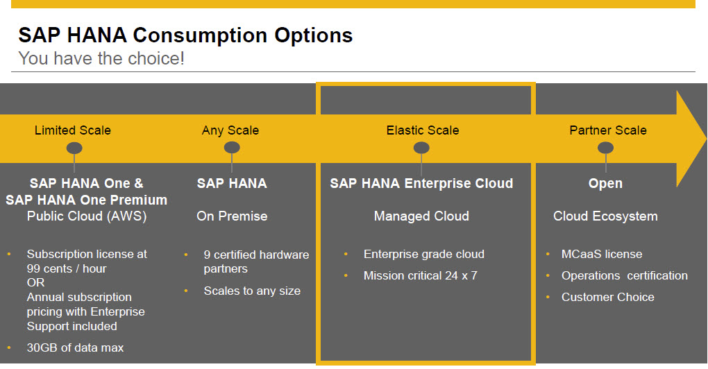 Blog SCN TechEd_SAP HANA Consumption Options.jpg