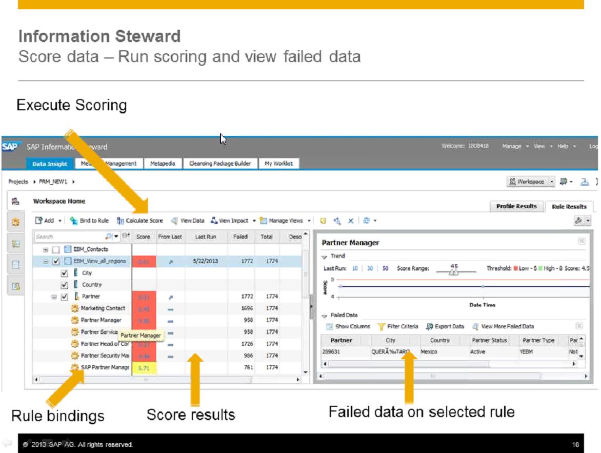 Information Steward 4.2 in Practice: How SAP\'s Data Management ...