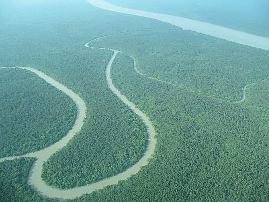 /wp-content/uploads/2013/12/1_1260378045_sundarbans_from_the_air_350922.jpg