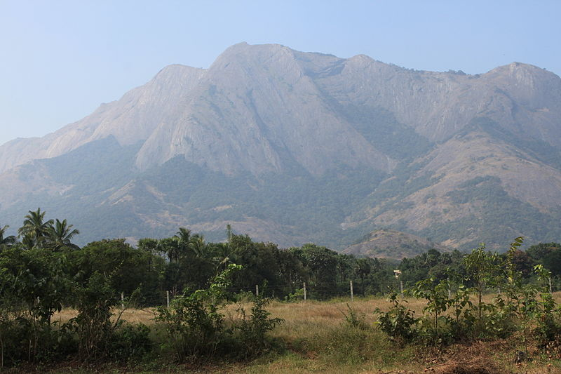 800px-The_Majestic_Western_Ghats_along_the_Palakkad_-_Coimbatore_Hwy_47.jpg