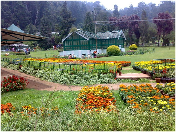 /wp-content/uploads/2014/02/ooty_397841.jpg
