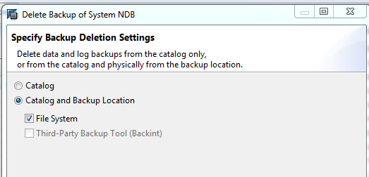SpecifyBackupSettings.PNG