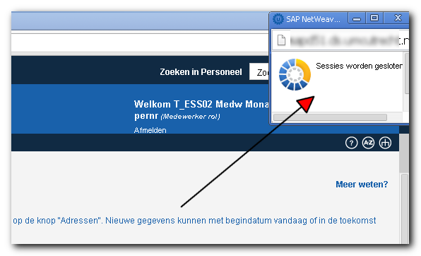 DSM Terminator and popup blockers (or not)   SAP Blogs