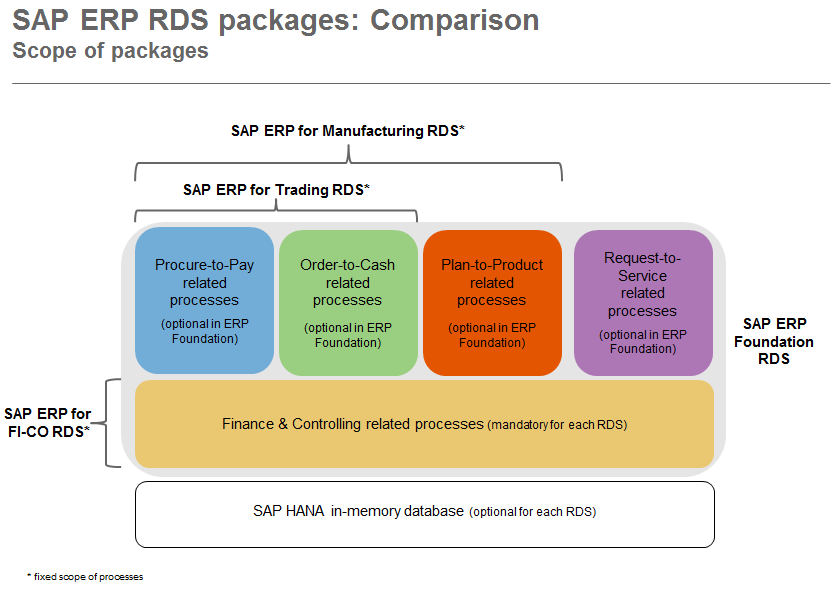ERP RDS Scope.PNG