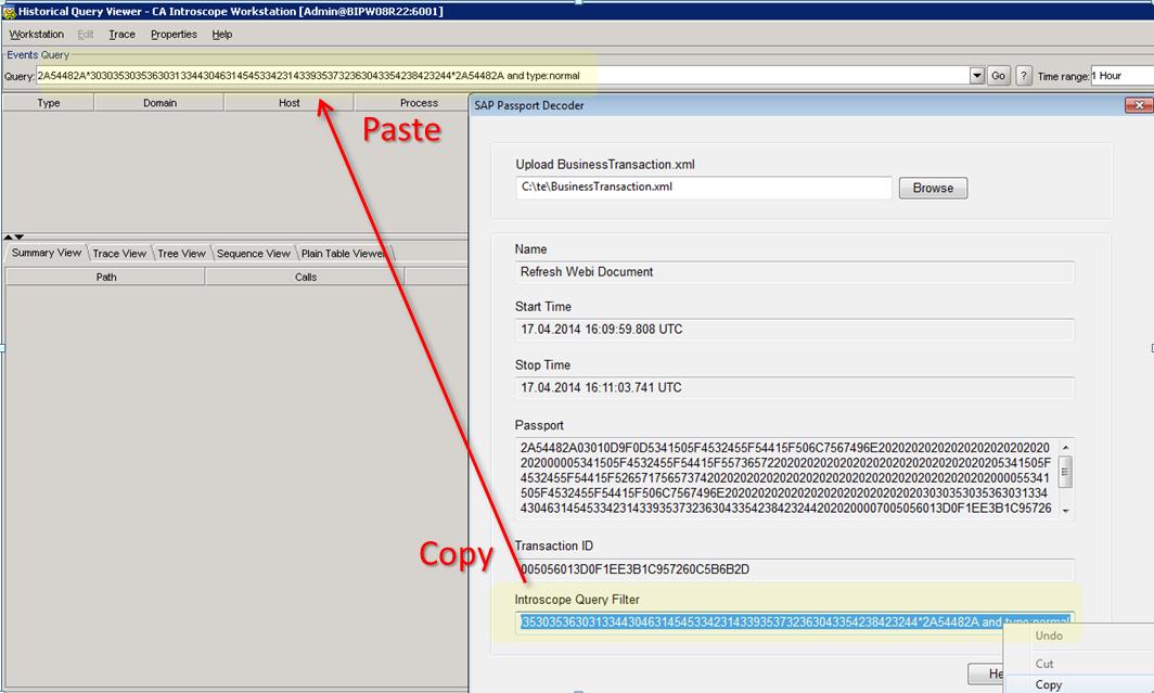 analyzing e2e performance using introscope transaction tracer sap
