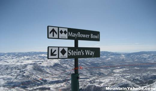 DeerValley_Stein_MayflowerBowl_Sign_n1639_w520.jpg