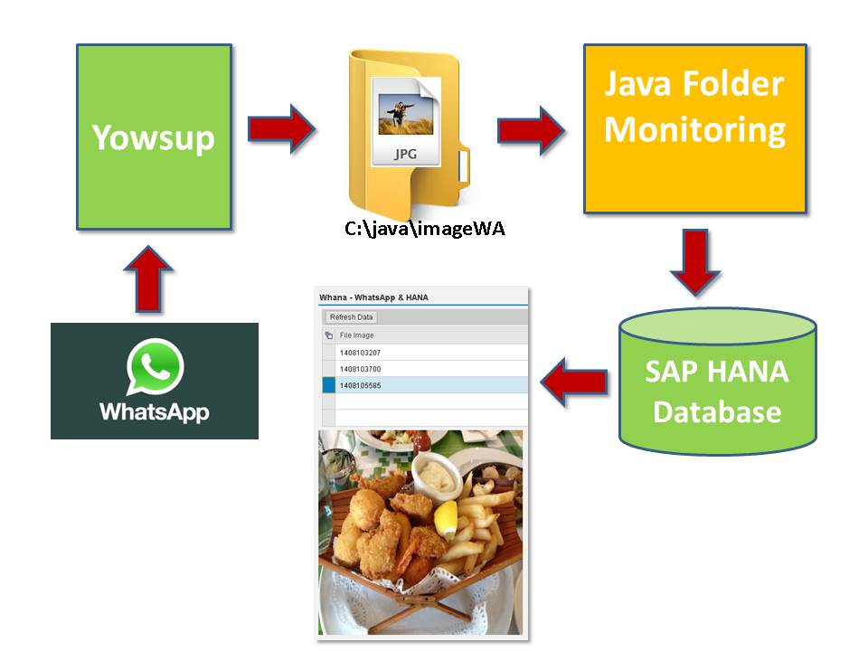 Playing with WhatsApp and SAP HANA Cloud Platform | SAP Blogs