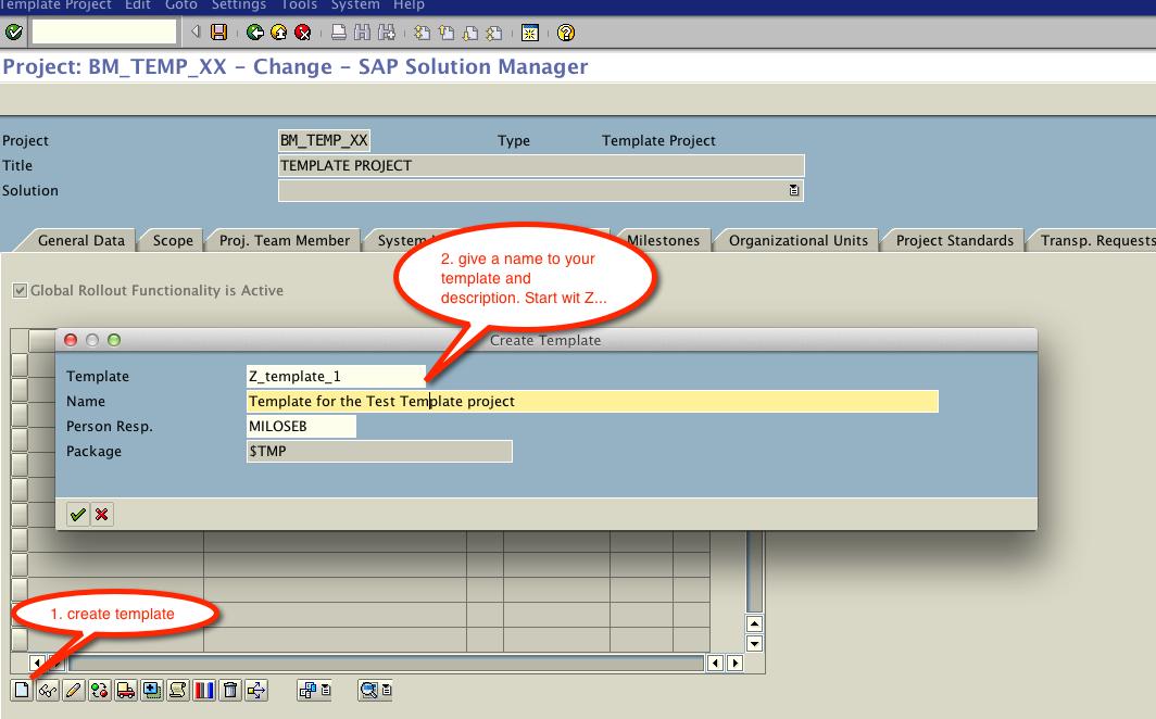 SAP Solman Implementation SAP SOLMAN