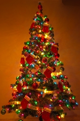 /wp-content/uploads/2014/11/christmastree_580952.jpg
