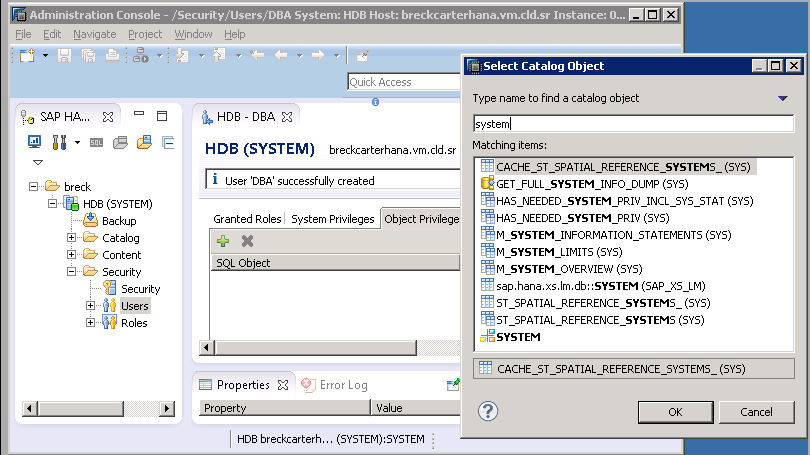 image 5b rev SAP HANA Studio - Select Catalog Object - Matching items.jpg