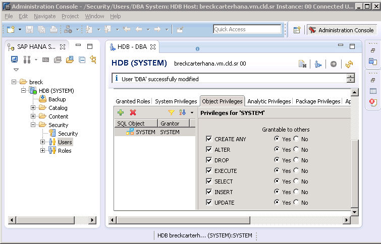 image 5c rev SAP HANA Studio - Privileges for 'SYSTEM'.jpg