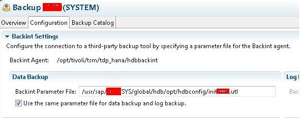 SAP HANA Backint for Tivoli Data Protection – High Level