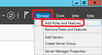 server manager add roles features.png