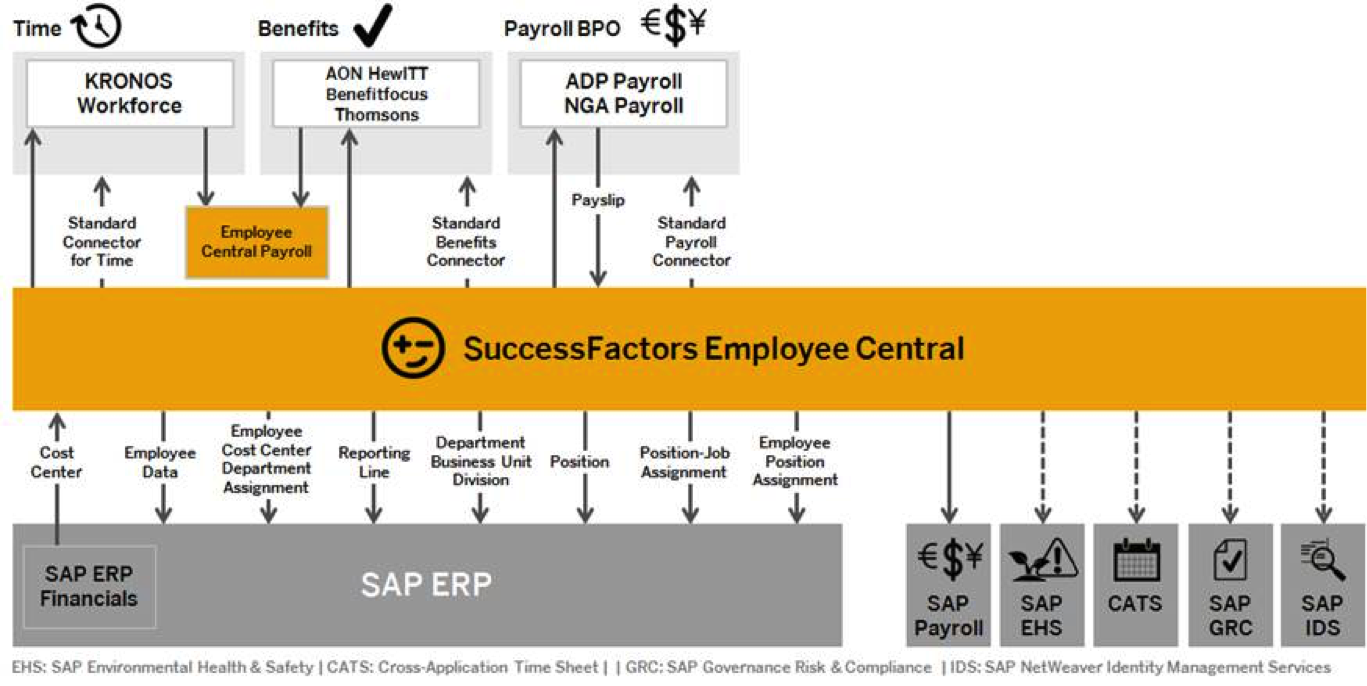 The Future Of Sap Hcm And Successfactors Consulting 2015