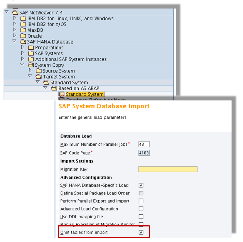 Oracle exp exclude synonyms for different