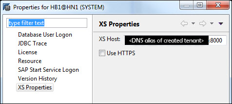 12_XS_properties_DNS_alias_of_created_tenant.jpg