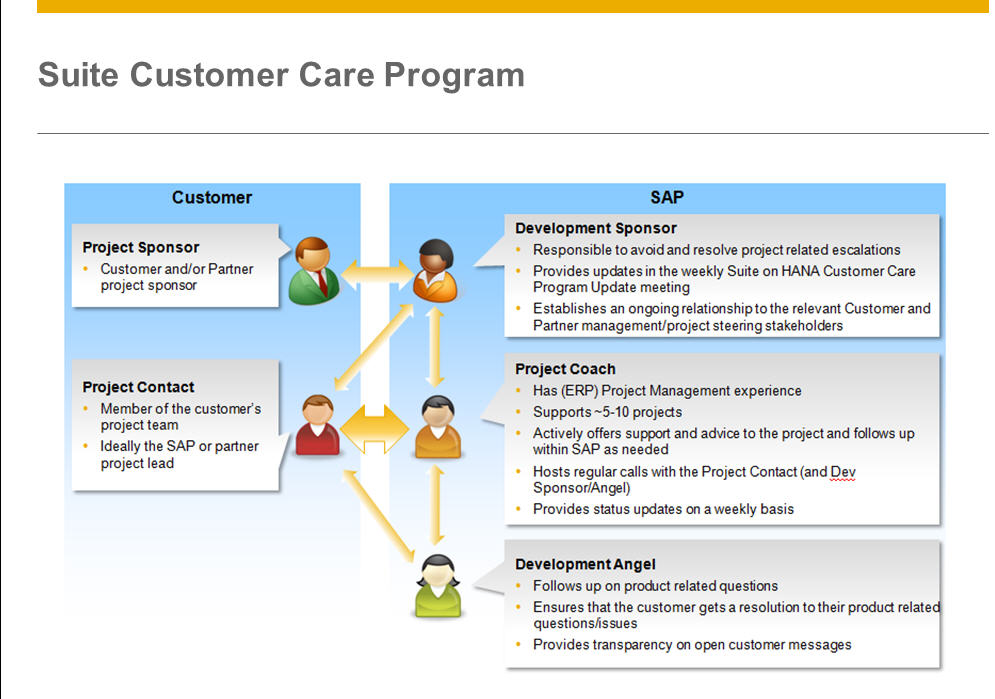 customer service projects