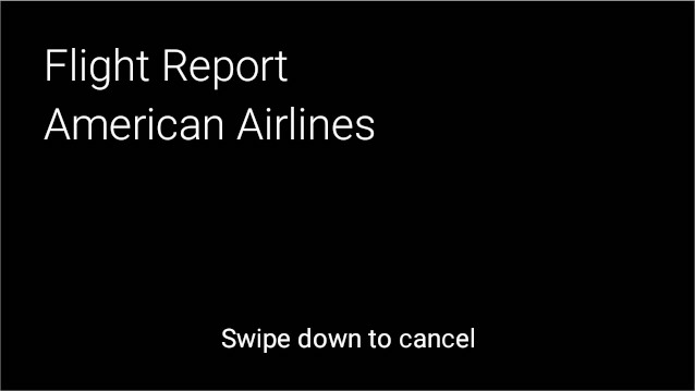 Flight_Report_AA.jpg