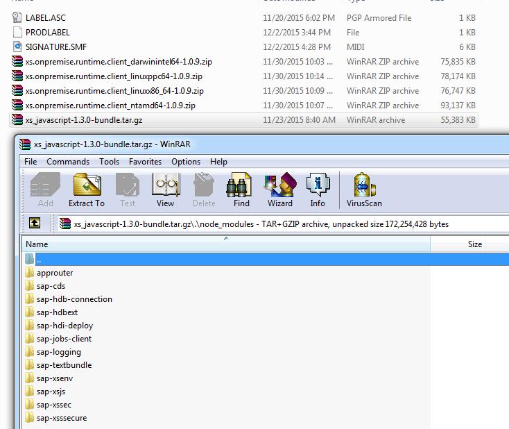 SAP HANA SPS 11: New Developer Features