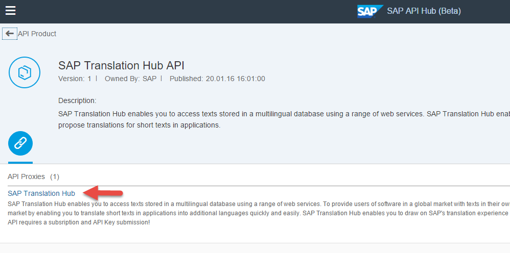 04 - SAP Translation Hub.png