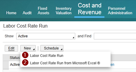 Labor cost run options.png