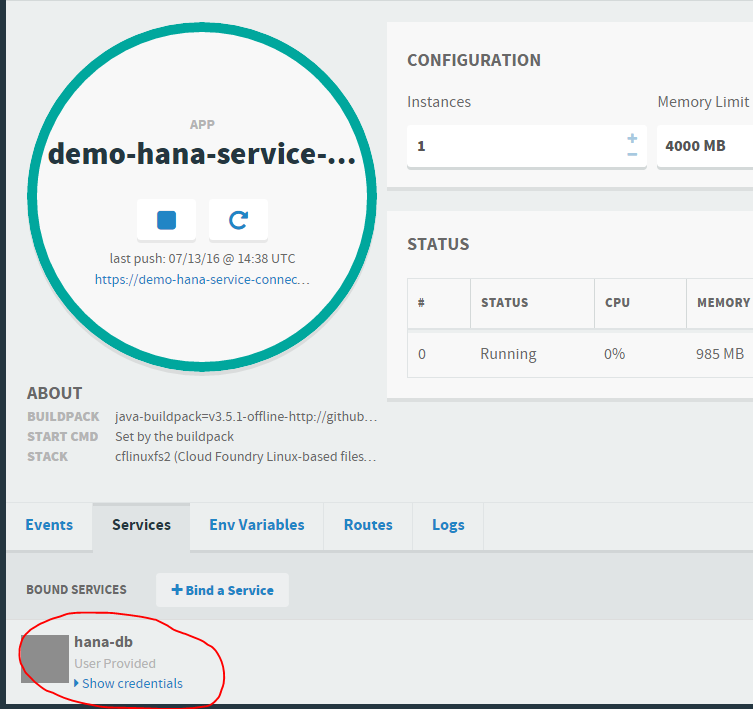 demo-hana-service-connector app - bound services.PNG