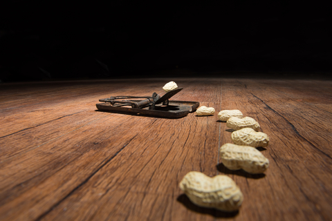 mouse_trap_peanuts