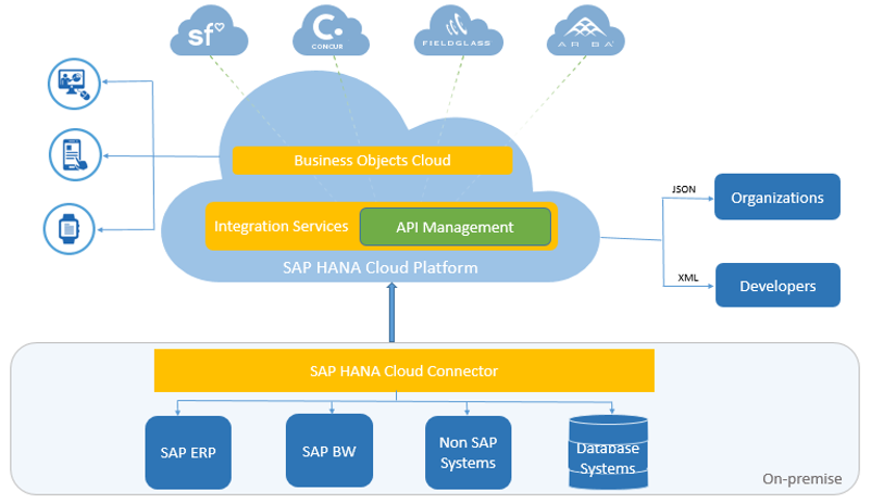Consuming Apis From Business Objects Cloud Via Sap Api