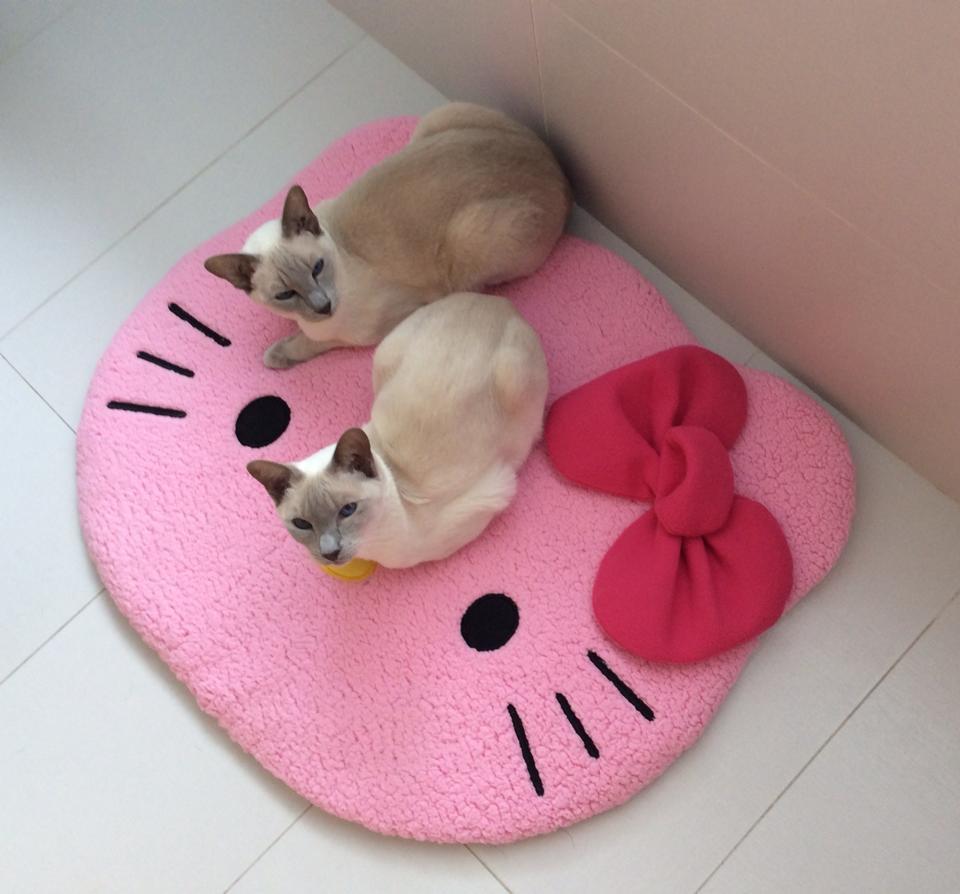 siamese_cats_hello_kitty_mat