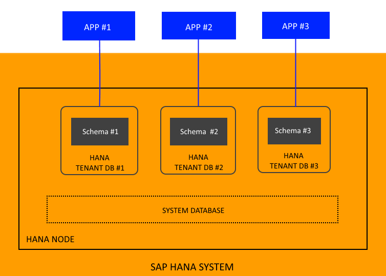 as an sap hana system consists of multiple servers