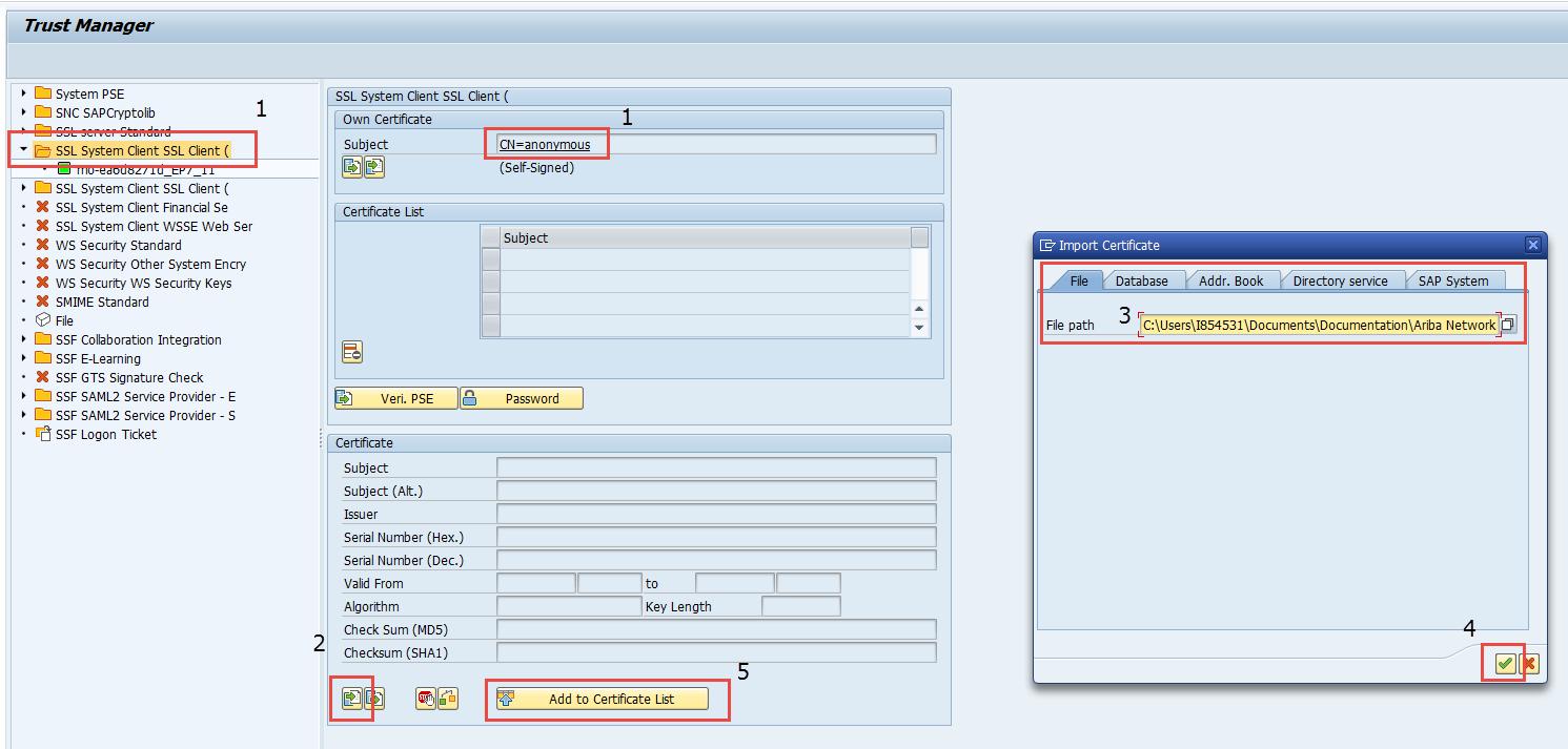 Ariba Network Integration for SAP Business Suite