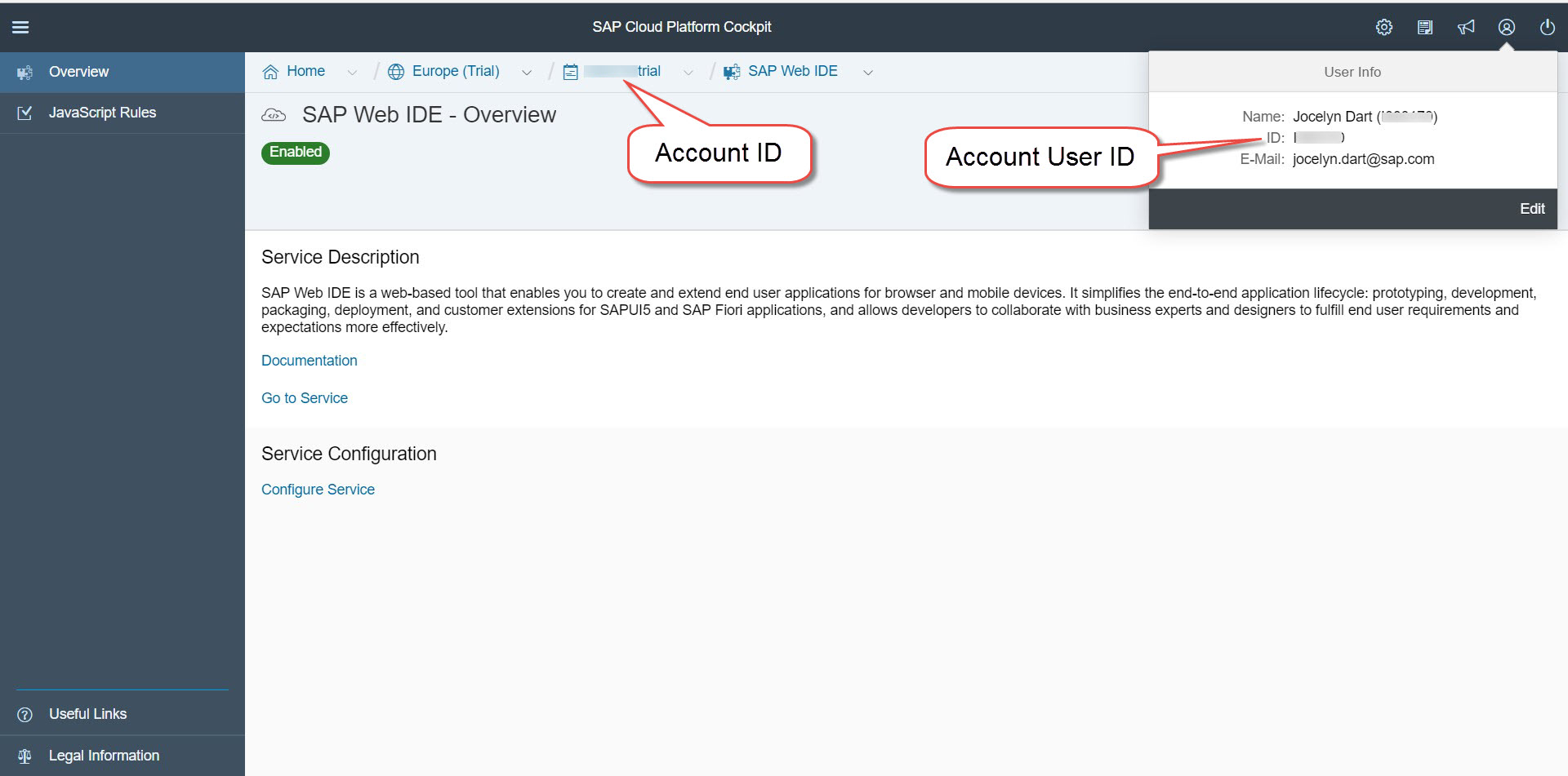 Cloud Platform Account Overview showing Account ID in the header and Account User ID in the User details
