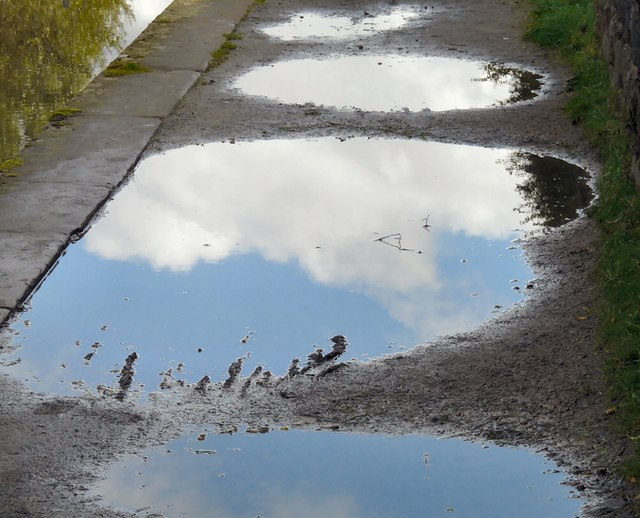 5 tips to avoid being a 'Puddle' | SAP Blogs