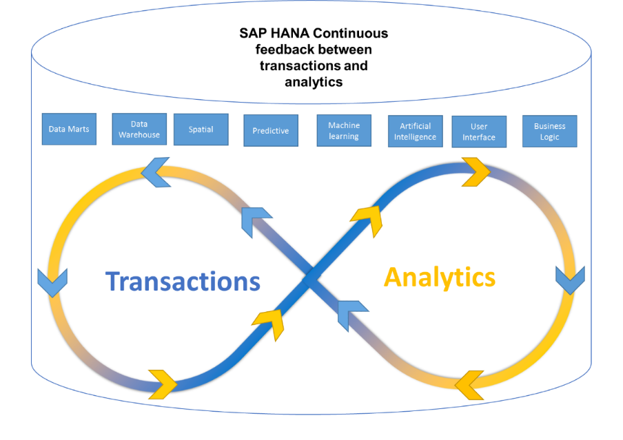 Bringing transactions and analytics into a single platform, SAP HANA adoption how to