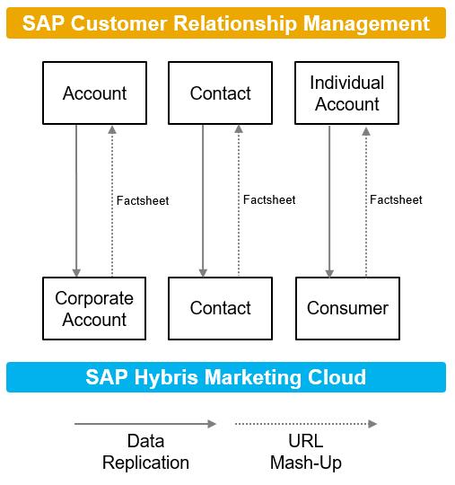 customer relationship management and marketing