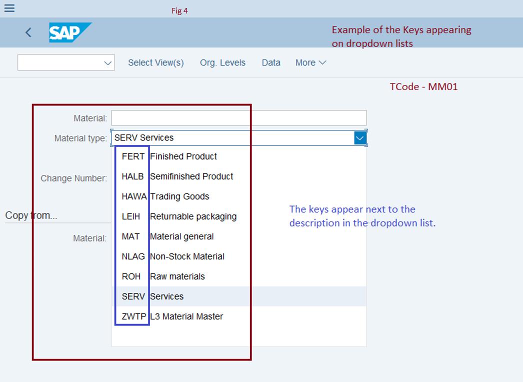 SAP GUI – Options show keys within dropdown lists | SAP Blogs